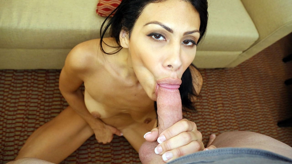 Pretty Latina Sucking Dick